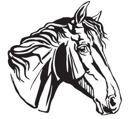 Decorative portrait in profile of surprised Trakehner horse, vector isolated illustration in black color on white background. Image for design and tattoo.