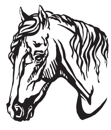 Decorative portrait in profile of Welsh Pony, vector isolated illustration in black color on white background. Image for design and tattoo.