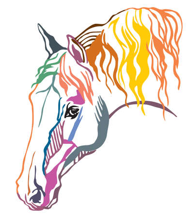 Colorful decorative portrait of  horse with long mane, vector illustration in different colors isolated on white background. Image for design and tattoo.