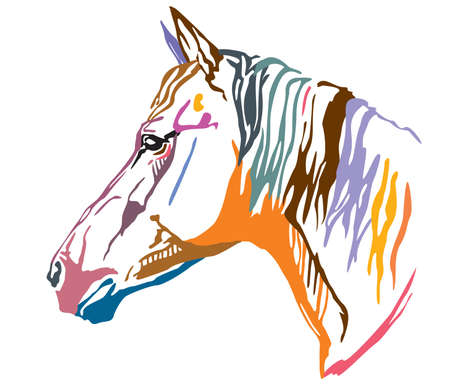 Colorful decorative portrait of horse, vector illustration in different colors isolated on white background. Image for design and tattoo.