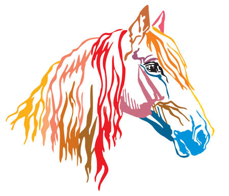 Colorful decorative portrait of Orlov Trotter horse, vector illustration in different colors isolated on white background. Image for design and tattoo. Ilustrace