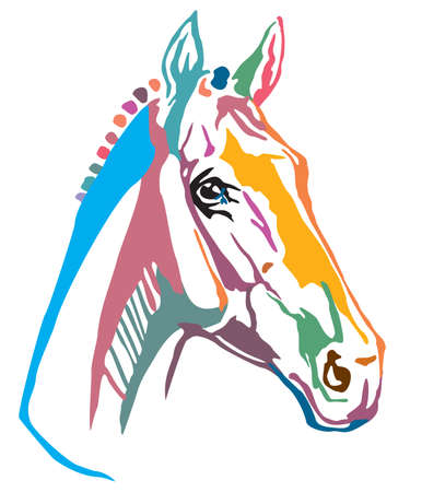 Colorful decorative portrait of Trakehner horse, vector illustration in different colors isolated on white background. Image for design and tattoo. Ilustracja
