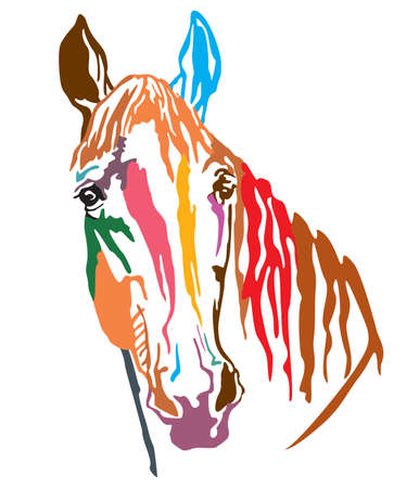 Colorful decorative portrait of Trakehner horse, vector illustration in different colors isolated on white background. Image for design and tattoo. Illustration