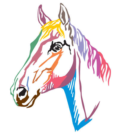 Colorful decorative portrait in profile of Trakehner horse, vector illustration in different colors isolated on white background. Image for design and tattoo.