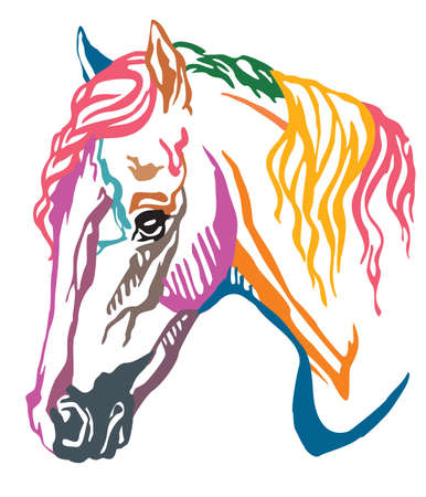 Colorful decorative portrait in profile of Welsh Pony, vector illustration in different colors isolated on white background. Image for design and tattoo.