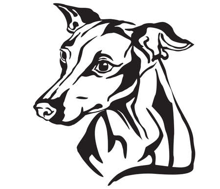 Decorative portrait in profile of Dog Italian Greyhound, vector isolated illustration in black color on white background. Image for design and tattoo.