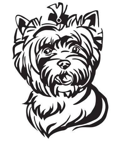 Decorative portrait of Dog Yorkshire Terrier, vector isolated illustration in black color on white background. Image for design and tattoo. Illustration