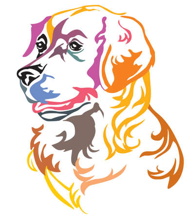 Colorful decorative portrait in profile of Dog Golden Retriever, vector illustration in different colors isolated on white background. Image for design and tattoo.