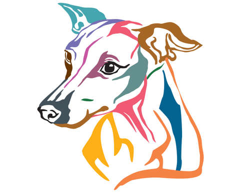 Colorful decorative portrait in profile of Dog Italian Greyhound, vector illustration in different colors isolated on white background. Image for design and tattoo.
