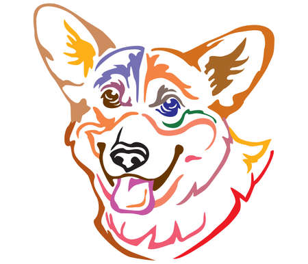 Colorful decorative portrait of Dog Welsh Corgi, vector illustration in different colors isolated on white background. Image for design and tattoo.