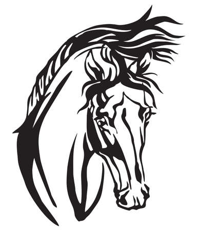 Decorative portrait of Arabian horse, vector isolated illustration in black color on white background. Image for design and tattoo.