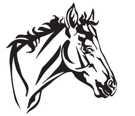 Decorative portrait in profile of foal, vector isolated illustration in black color on white background. Image for design and tattoo. 일러스트