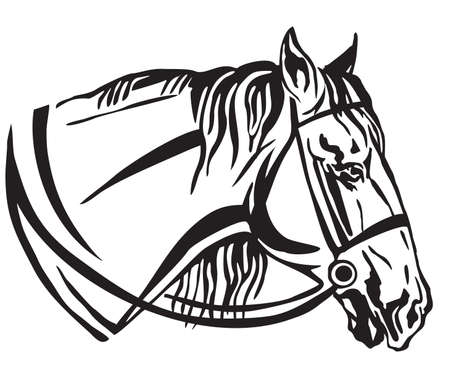 Decorative portrait in profile of horse with bridle, vector isolated illustration in black color on white background. Image for design and tattoo.