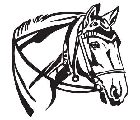Decorative portrait in profile of horse with beautiful bridle, vector isolated illustration in black color on white background. Image for design and tattoo. Illustration