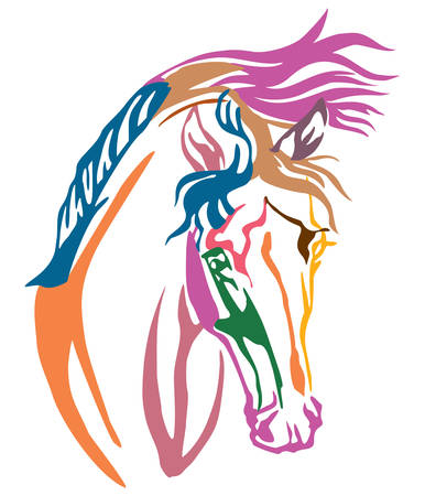 Colorful decorative portrait of Arabian horse, vector illustration in different colors isolated on white background. Image for design and tattoo.
