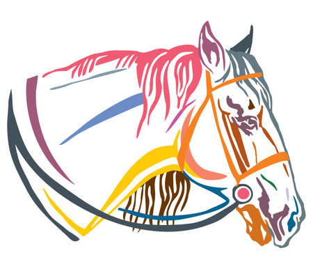 Colorful decorative portrait in profile of horse with bridle, vector illustration in different colors isolated on white background. Image for design and tattoo.