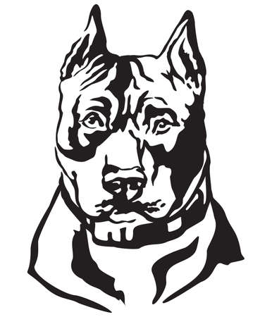Decorative portrait of dog American Staffordshire Terrier, vector isolated illustration in black color on white background