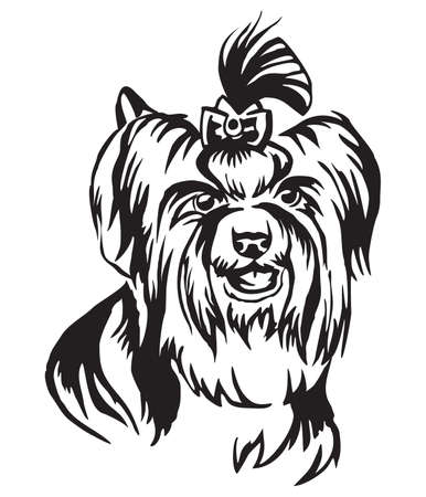 Decorative portrait of dog Yorkshire Terrier, BiewerTerrier, vector isolated illustration in black color on white background