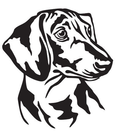 Decorative portrait of dog Dachshund, vector isolated illustration in black color on white background Vettoriali