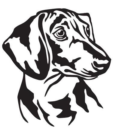 Portrait décoratif de chien Teckel, illustration vectorielle isolée en couleur noire sur fond blanc