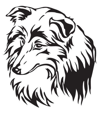 Decorative portrait of dog Shetland Sheepdog (Sheltie), vector isolated illustration in black color on white background