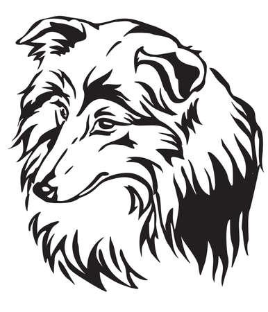 Decorative portrait of dog Shetland Sheepdog (Sheltie), vector isolated illustration in black color on white background
