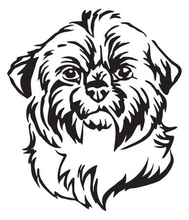 Decorative portrait of dog Shih Tzu, vector isolated illustration in black color on white background