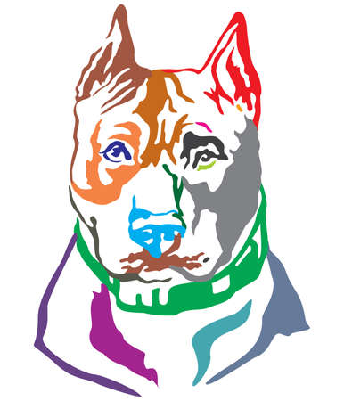 Colorful decorative portrait of dog American Staffordshire Terrier, vector illustration in different colors isolated on white background Illustration