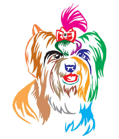 Colorful decorative portrait of dog Biewer Terrier ( Yorkshire Terrier), vector illustration in different colors isolated on white background