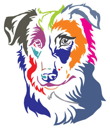Colorful decorative portrait of dog Border Collie, vector illustration in different colors isolated on white background