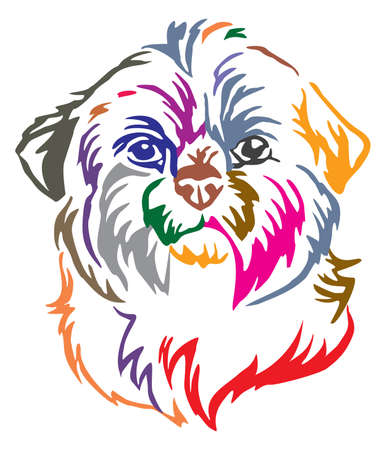 Colorful decorative portrait of dog Shih Tzu, vector illustration in different colors isolated on white background