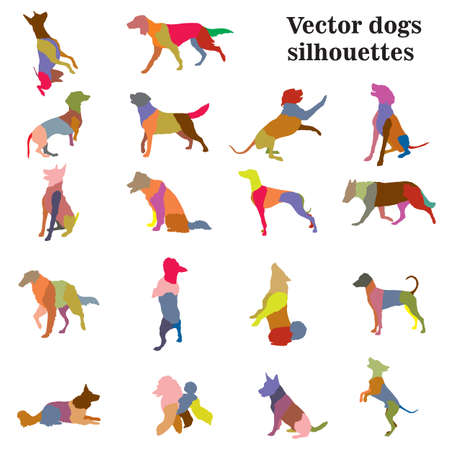 Vector set of colorful mosaic different breeds dogs silhouettes in motion- sitting, standing, lying, walking in profile isolated on white background.