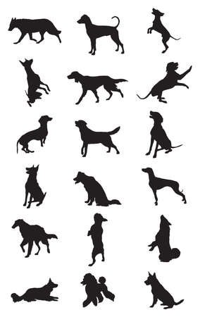 Vector set of monochrome different breeds dogs silhouettes in motion- sitting, standing, lying, walking in profile isolated on white background.
