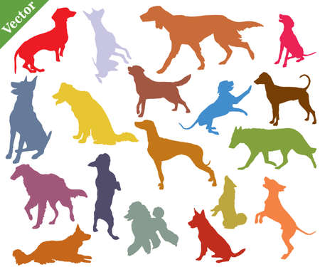 Vector set of colorful different breeds dogs silhouettes in motion- sitting, standing, lying, walking in profile isolated on white background. Illustration