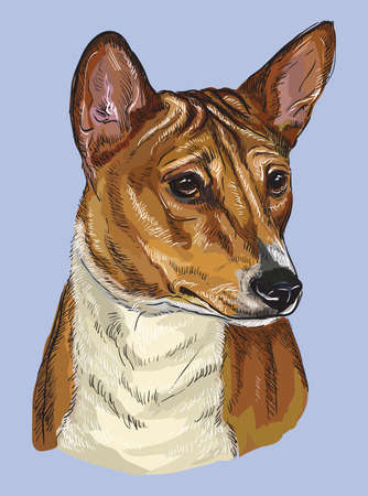 Basenji vector hand drawing illustration in different color on blue background