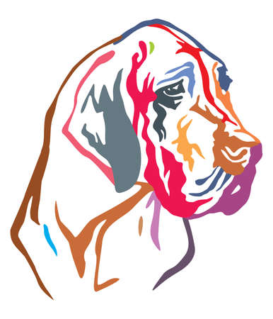 Colorful decorative portrait of dog Great Dane, vector illustration in different colors isolated on white background