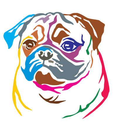 Colorful decorative portrait of dog Pug, vector illustration in different colors isolated on white background