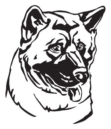 Decorative portrait of dog American akita, vector isolated illustration in black color on white background