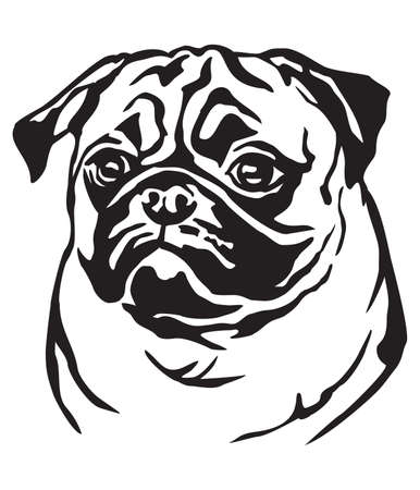 Decorative portrait of dog Pug, vector isolated illustration in black color on white background Ilustração