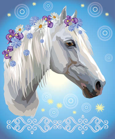 Vector colorful illustration. Portrait of white horse with different flowers in mane isolated on blue gradient background with decorative ornament and circles. Image for art and design