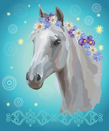 Vector colorful illustration. Portrait of white horse with different flowers in mane isolated on turquoise gradient background with decorative ornament and circles. Image for art and design