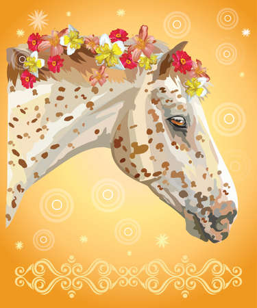Vector colorful illustration. Portrait of spotted horse with different flowers in mane isolated on orange gradient background with decorative ornament and circles. Image for art and design Illustration