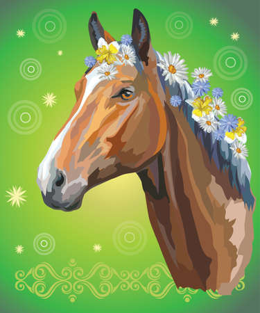 Vector colorful illustration. Portrait of bay horse with different flowers in mane isolated on green gradient background with decorative ornament and circles. Image for art and design Illustration