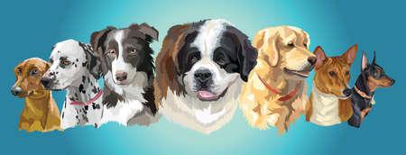 Set of colorful vector portraits of dog breeds (German Pinscher; dalmatian; Border Collie; St. Bernard; Basenji; golden retriever; Miniature Pinscher) isolated on turquoise background Illustration