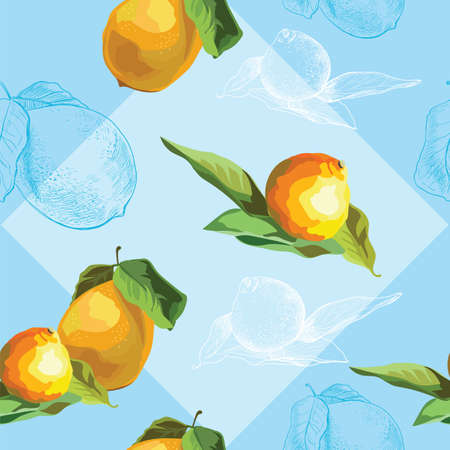 Vector colorful illustration. Seamless pattern with vector and hand drawing fruits lemon and tangerine isolated on blue background. Image for art and design