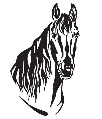 Decorative portrait of beautiful horse with long mane, isolated vector illustration in black color on white background. Image for design and tattoo. Banque d'images - 112399719