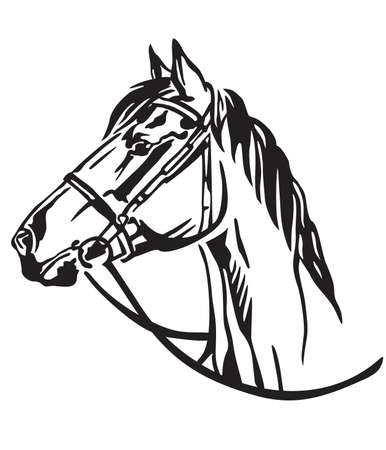 Decorative portrait in profile of horse with bridle, vector isolated illustration in black color on white background. Image for design and tattoo. 스톡 콘텐츠 - 112399720
