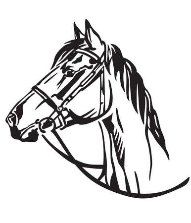 Ritratto decorativo nel profilo del cavallo con briglia, illustrazione vettoriale isolato in colore nero su sfondo bianco. Immagine per design e tatuaggio.