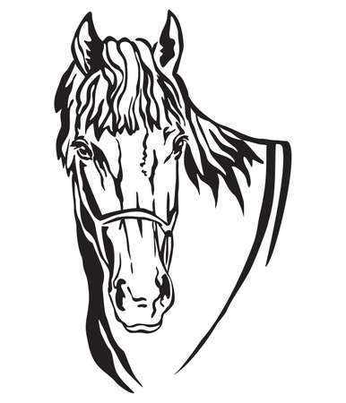 Decorative portrait of beautiful horse with long mane, isolated vector illustration in black color on white background. Image for design and tattoo.