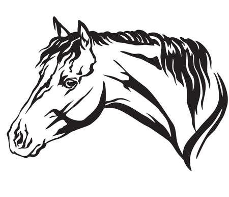 Retrato decorativo en perfil de Welsh Pony, vector ilustración aislada en color negro sobre fondo blanco. Imagen para diseño y tatuaje.